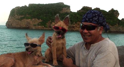 沖縄犬夢=オキナワンドリーム