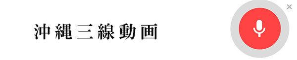沖縄三線動画.jpg