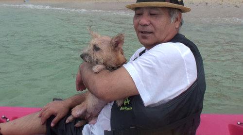 愛犬サンシン1.jpg